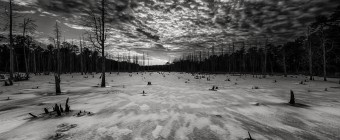 A dark sepia HDR photograph of a frozen wetland of the Stafford Forge Wildlife Management Area taken just before sunset