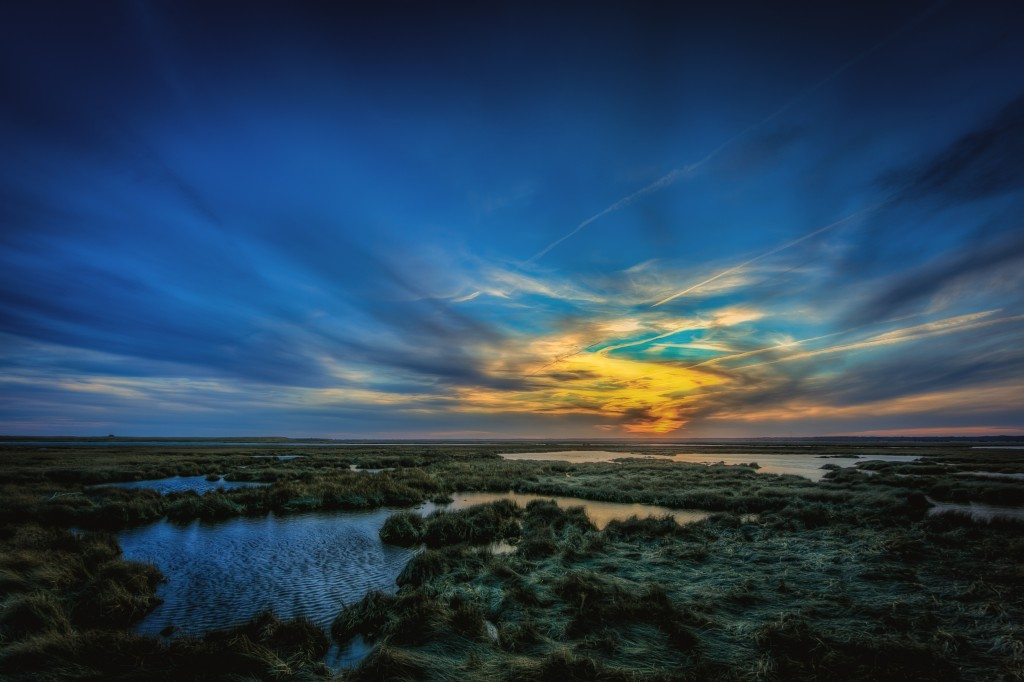 An HDR photograph taken over a windswept marsh on a cold winter's day at sunset along Cedar Run Dock Road. The photograph features a soft diffuse light.