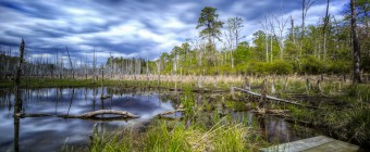 A long exposure HDR landscape photograph taken at the Ballanger Creek Habitat Enhancement Site. Darkened clouds overhead make their way about the sky reflected on water as still as glass.