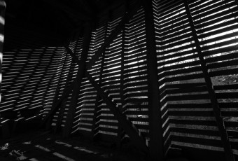 Low key black and white photograph uses strong lines in front of backlit sun to a repetitive effect