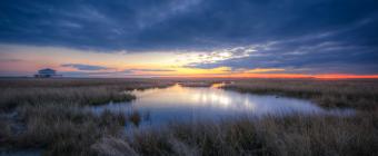 A soft focus HDR photograph taken along the Cedar Run Dock Road marsh at sunset.