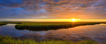 HDR photograph of sunrise over the green marsh of Cedar Run Dock Road.