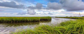 Wide angle photograph of blue skies, cumulus clouds, estuary and marsh
