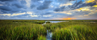 Golden hour wide angle HDR landscape photograph of clouds and marsh