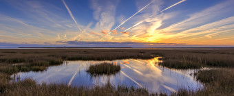 Contrails line the sky over a reflective marsh tide pool at sunset