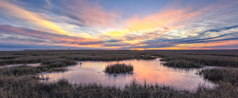 Sunset photo of cool colors over a frozen marsh