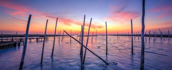 Sunset photograph of frozen bay ice locking in marina posts