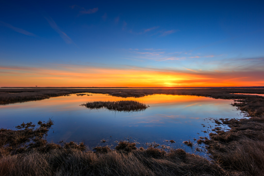Sunset photograph of a reflective marsh tide pool