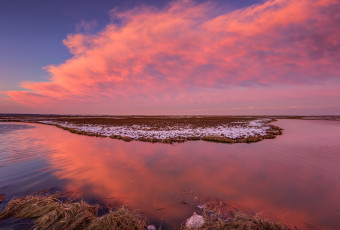 Landscape photograph of pastel clouds over marsh at sunset