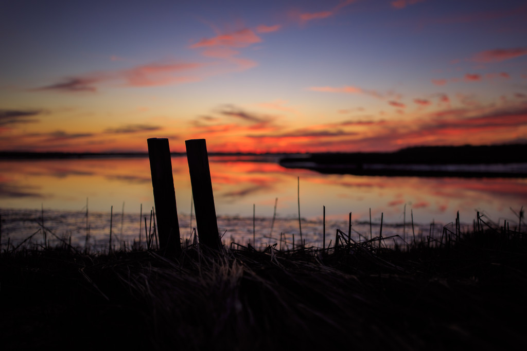 Low key sunset photo of two pieces of wood standing upright in a marsh