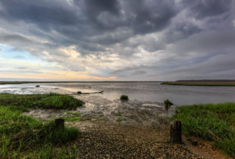 Wide angle landscape photograph of ominous storm clouds rolling over a lush green salt marsh