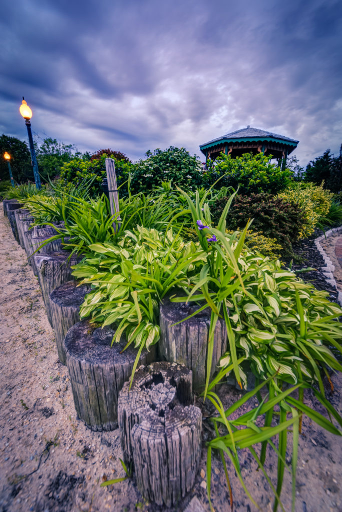 Vertical orientation wide angle photograph of well manicured plant life and gazebo at blue hour
