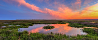 HDR sunset photo of a pastel sunset sky over a green marsh