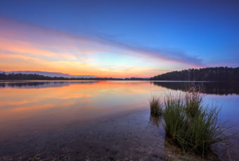 Pastel sunset photo reflected over a glassy lake at Stafford Forge Wildlife Management Area
