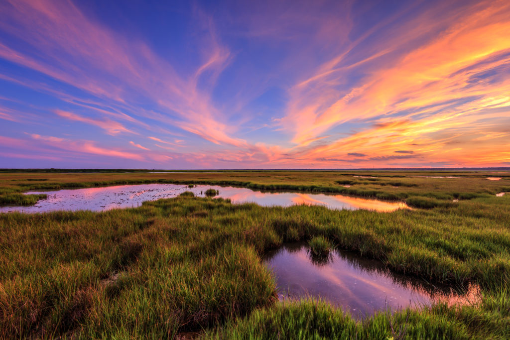 HDR sunset photograph featuring cirrus clouds colored in rich pastels over vivid green salt marsh.