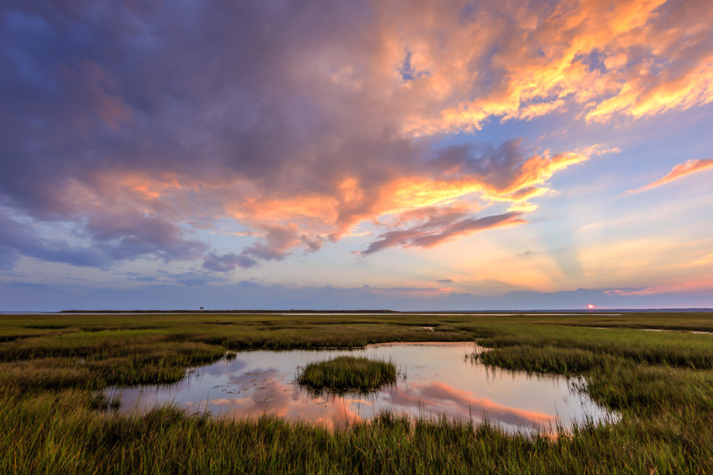 Sunset photograph of anticrepuscular rays coloring clouds over the marsh.