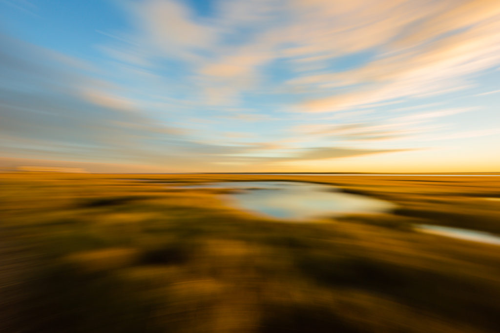 Motion blur photo of marsh at golden hour.