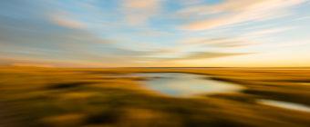 Motion blur photo of marsh at golden hour.