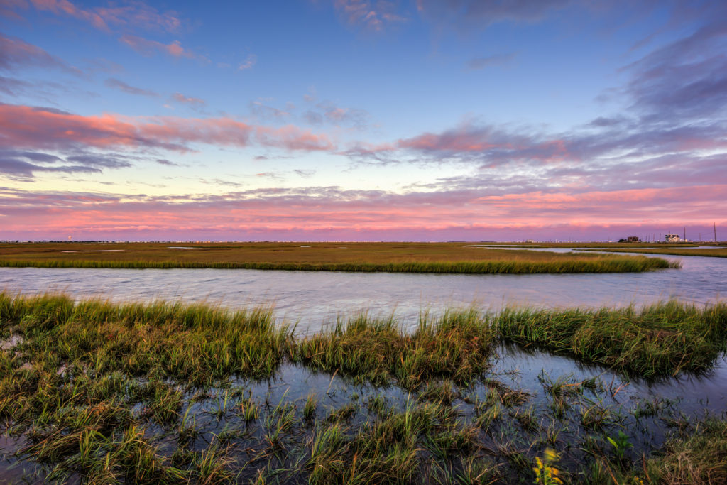 Blue hour photo of pink and purple clouds over marshland.