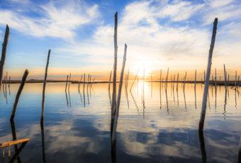 Golden hour photograph lights up a derelict marina.