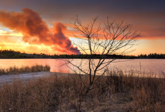 NJ Pinelands controlled burn photo of a smoke plume at sunset.