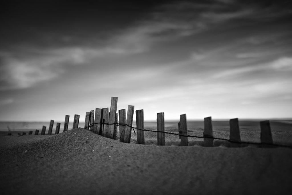 Strong contrast black and white photo of sand dune enveloping sand fence.