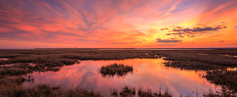 Sunset photo of rich pastel color over saltmarsh.