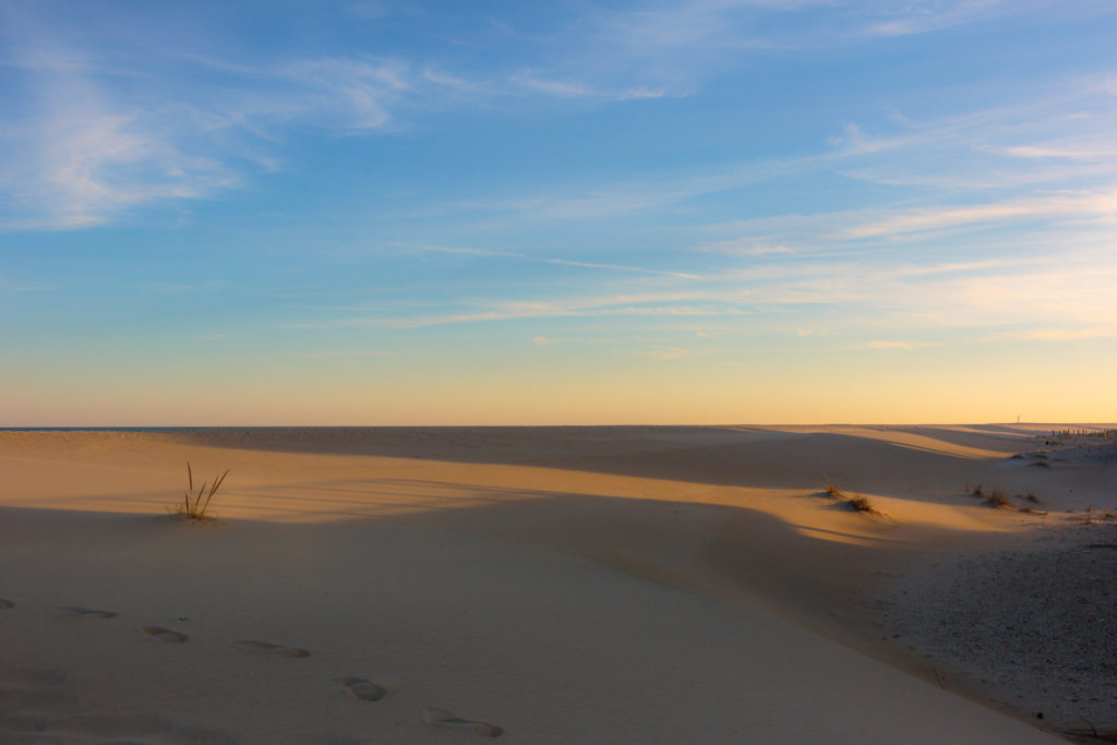 Golden hour photo of wind swept sand dunes on Long Beach Island.