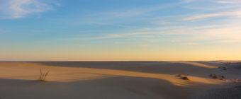 Golden hour photo of wind swept sand dunes on Long Beach Island.