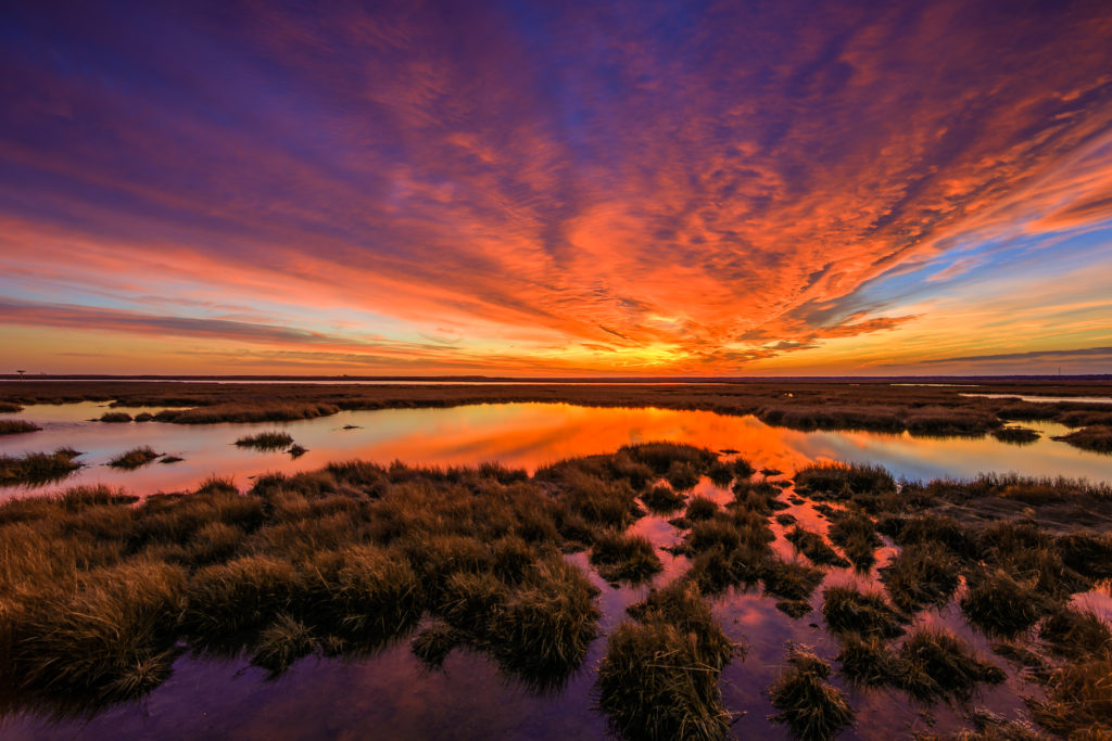 Fiery winter sunset photo over marsh