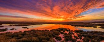 Fiery winter sunset photo over marsh