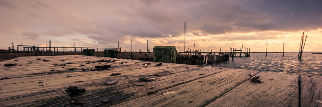 Golden hour photo of cracked mussel shells, docks, and storm clouds.