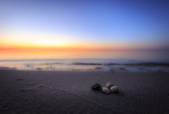 Blue hour photo of four small pebbles set upon an empty bay beach.