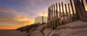 Golden sunset photo of sand dune lined with sand fence.