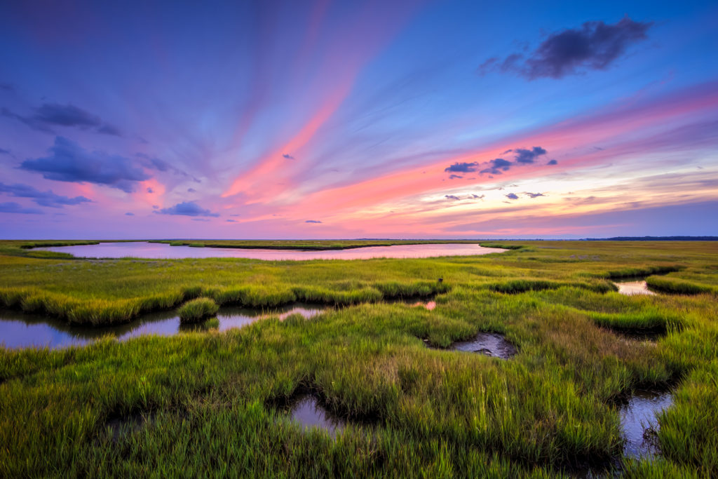 Pastel sunset photo over Great Bay Boulevard Wildlife Management Area's yellowing marsh.