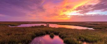 Pink and purple sunset photo over salt marsh.