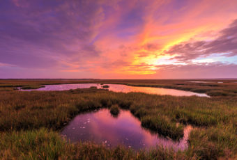 Pink and purple sunset photo over salt marsh.