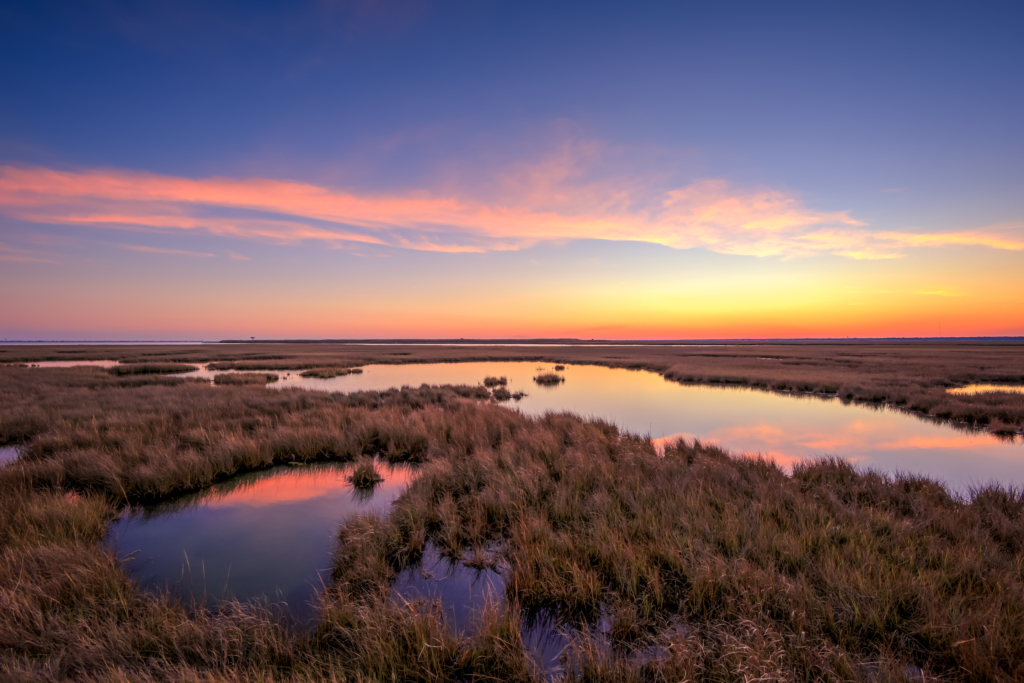 Salt marsh sunset photo in late fall.
