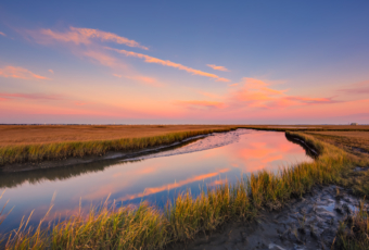Pastel sunset over salt marsh and reflective water.