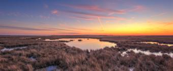 Pastel winter sunset over dormant salt marsh.