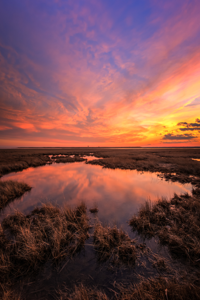 Fiery sunset over winter salt marsh.