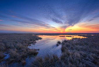 Blue hour over late winter salt marsh and tide pool.
