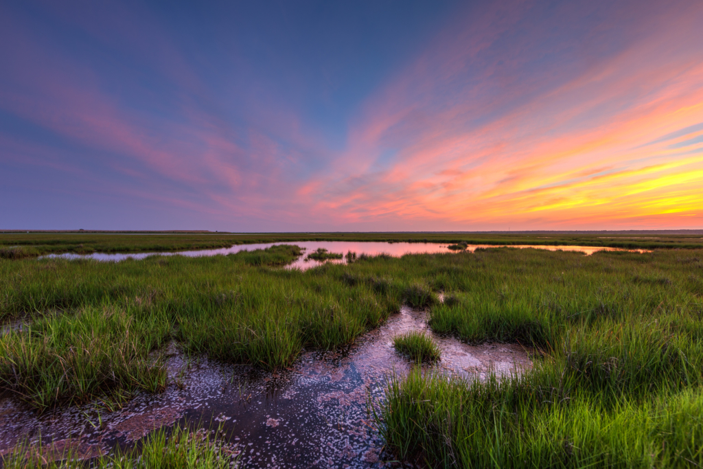 Pastel color sunset photo over green salt marsh and tide pools.