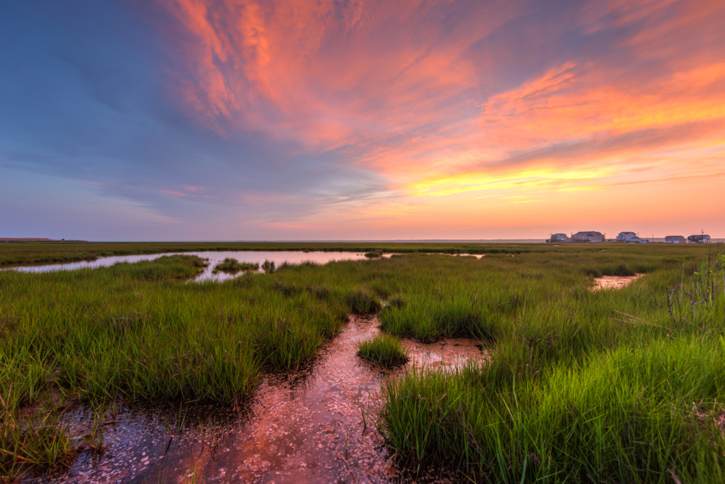 Sunset photo of pastel color clouds over reflective water and green salt marsh.