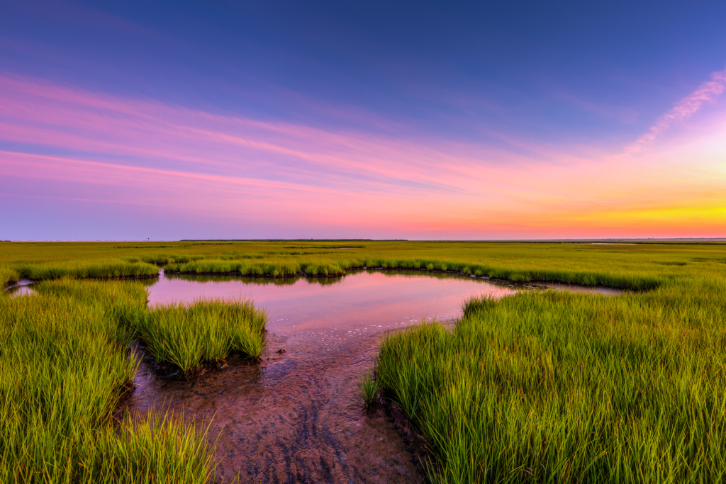Wide angle HDR sunset photo over marsh grass and reflected in water.