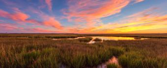 Wide angle pastel sunset photo over salt marsh.