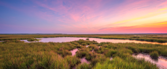 14mm wide angle HDR sunset photo capturing pastel color skies over Cedar Run Dock Road salt marsh.