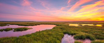 14mm wide angle sunset photo made over salt marsh and tide pools.