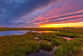 14mm wide angle HDR sunset photo made over late summer salt marsh with a five distant homes in the background.