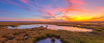 14mm wide angle sunset photo of a salt marsh with cotton candy pastel clouds, deep blue sky, and rich sunset colors.